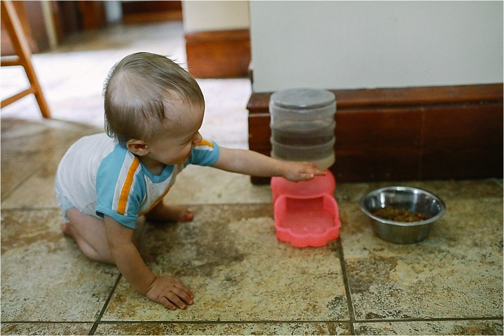 baby splashes in his dog's bowl making a mess